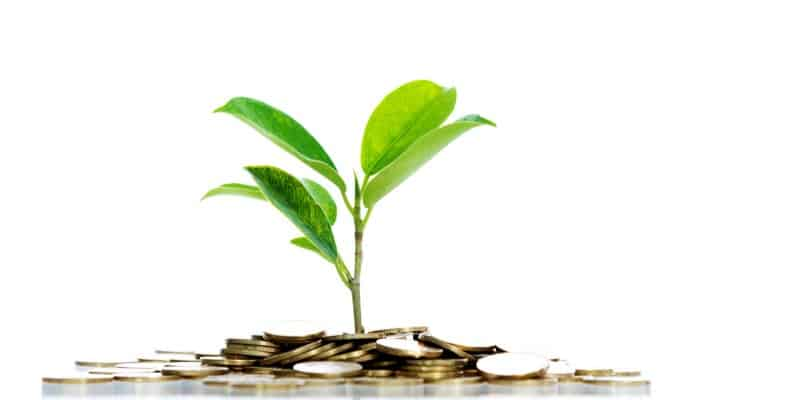 plant sprouting through coins, symbolizing how we invest to grow your assets